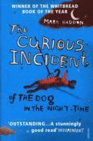 Curious Incident Of The Dog In The Night-Time: Adult edition