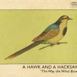 Hawk And A Hacksaw: Way The Wind Blows