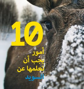 10 Things To Know About Sweden- Arabiska 5-pack