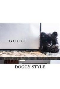 Gucci Doggy Style