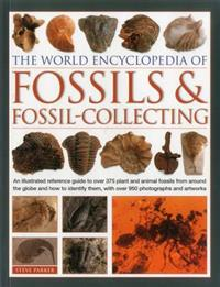 World Encyclopedia of Fossils & Fossil-collecting